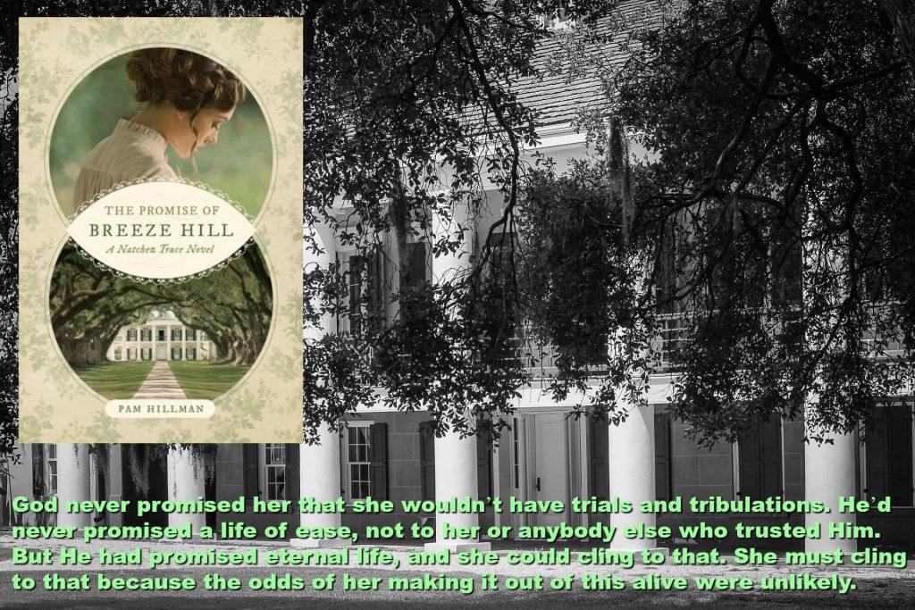 Promise of Breeze Hill Pam Hillman