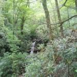 grotto falls 2
