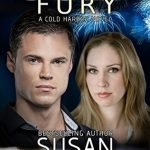 Cold Fury by Susan Sleeman