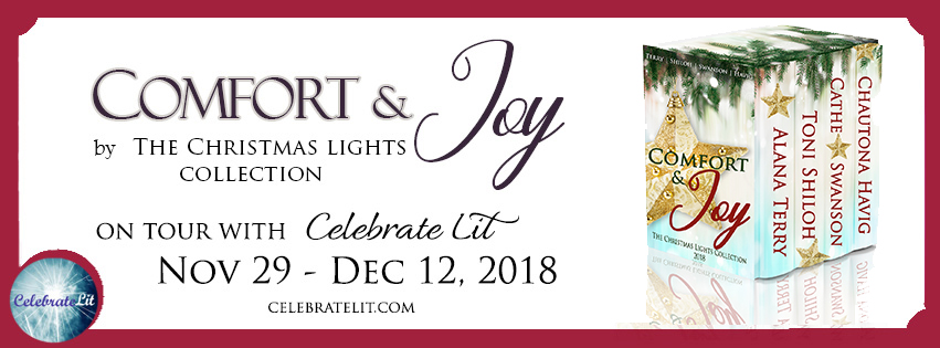 Comfort & Joy: HOliday Lights